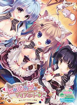 Nyan Café Macchiato ~Neko ga Iru Café no Ecchi Jijou~ poster
