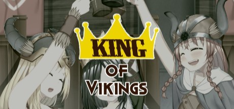 King of Vikings poster