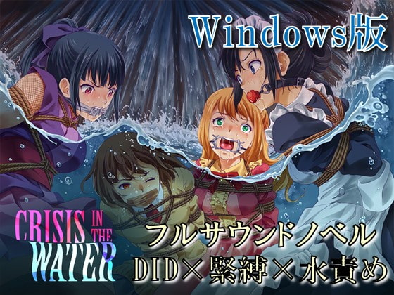 Crisis In The Water - Windows poster