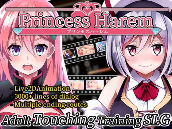 Princess Harem poster