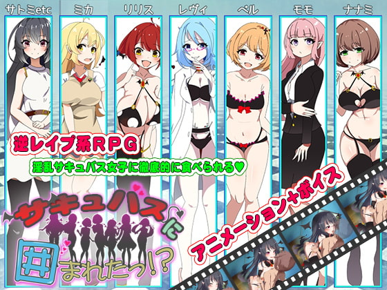 Surrounded By Succubi!? poster